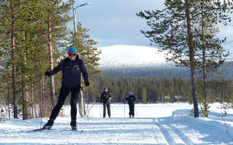 BergFrau Lappland. Wintersport