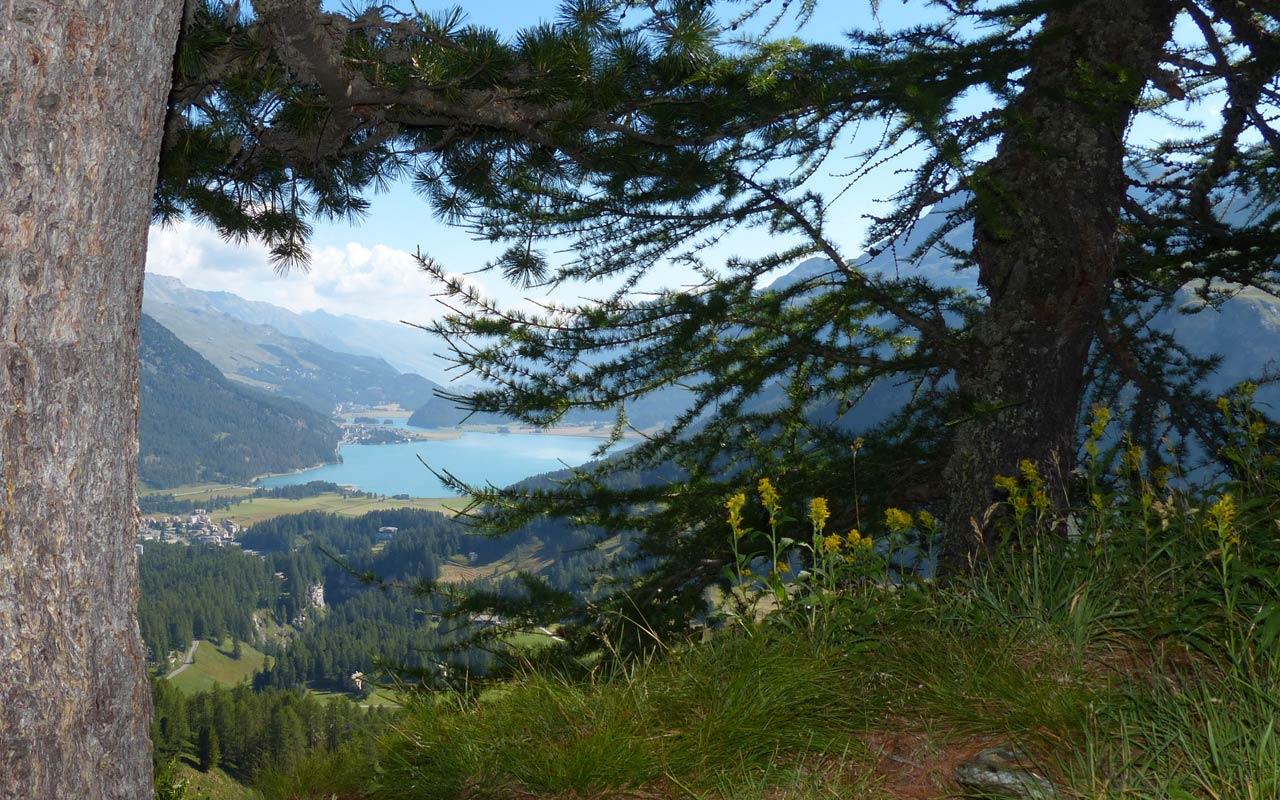 Mehrtage-Wanderung Graubünden. Engadin