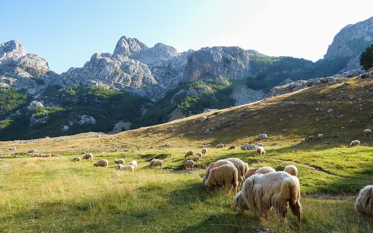 Trekking Peaks of the Balkans, Albanien