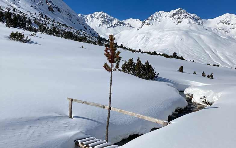 Schneeschuhtouren Engadin Münstertal. Programm