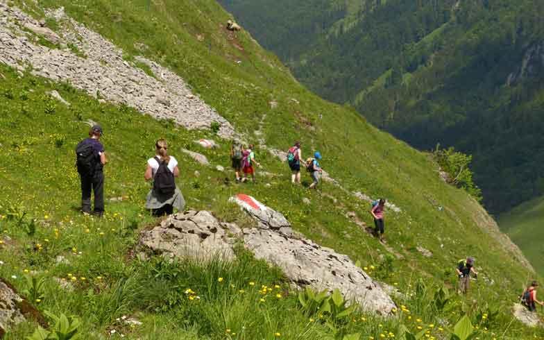 Programm Wanderung Werdenberg/Rheintal